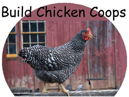 Build Chicken Coops