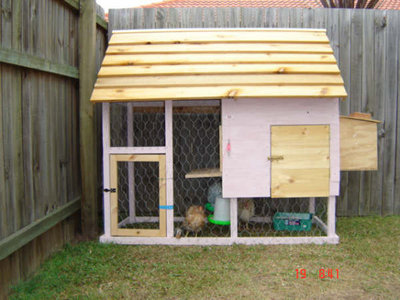 Plans for a chook shed