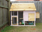 chicken house with external nestbox